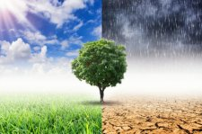 global warming 180705110027_1_540x360